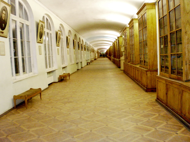 Здание двенадцати коллегий санкт